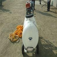 农用汽油高喷打药机 高喷杆农业喷雾器