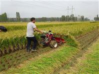水稻收割打捆机