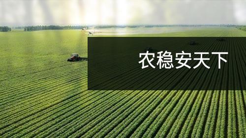 中农办主任韩俊:乡村振兴关键看人气,要留住人才青年
