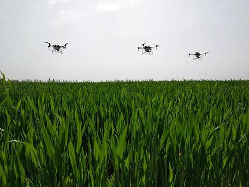 从高效率智能化无人机喷洒到环保的守卫者 全丰标普在行动