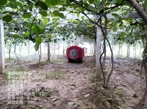 宝鸡博通-全自动喷雾机产品介绍